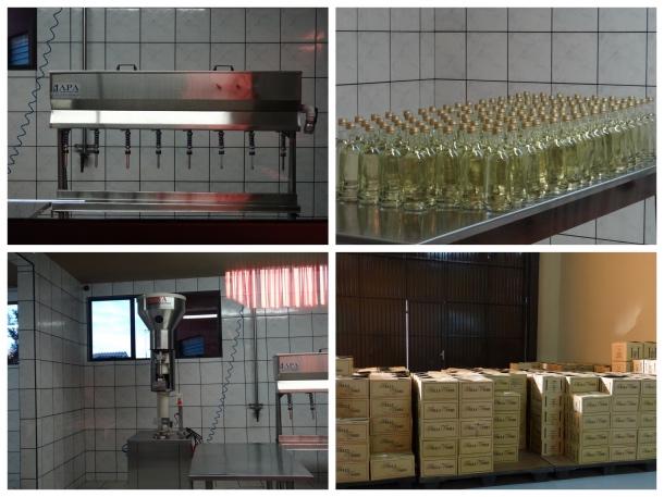 Fabricação de vinho na vinícola da serra