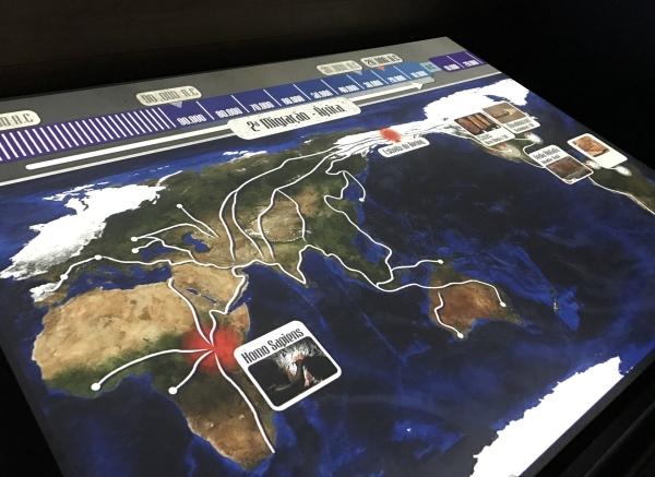 rotas migratórias do mundo