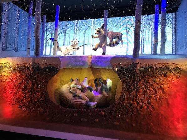 Loja no Natal em Nova York