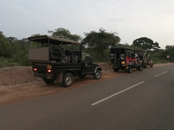 Carros do safári no Sri Lanka