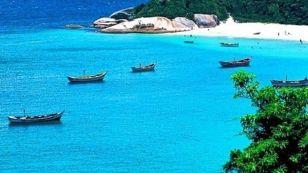 https---www.temporadalivre.com-uploads-picture-mv_files-image-000-001-192-050-1192050-thumb_casa-na-praia-do-campeche-aluguel-temporada-florianopolis-campeche