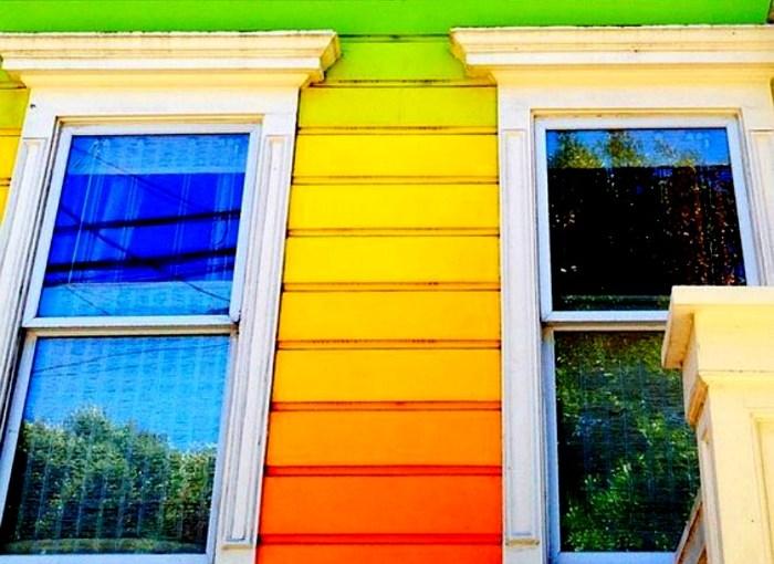 A vida em cores