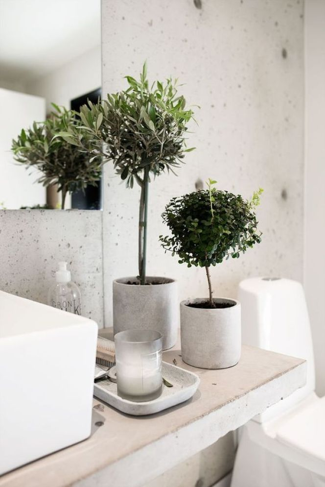 banheiro spa 4 french fancy