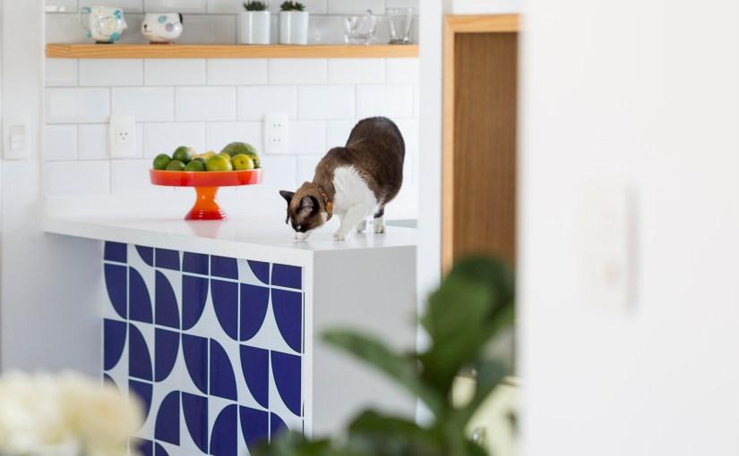Quando os pets ganham vantagem na decoração