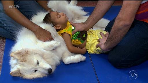 Projeto avalia efeito da Terapia Assistida por Animais em crianças com microcefalia