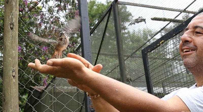Soltura de animais recuperados pelo Projeto Selva Viva.