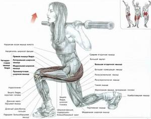 Упражнения для бедер в картинках | Prokachkov.ru