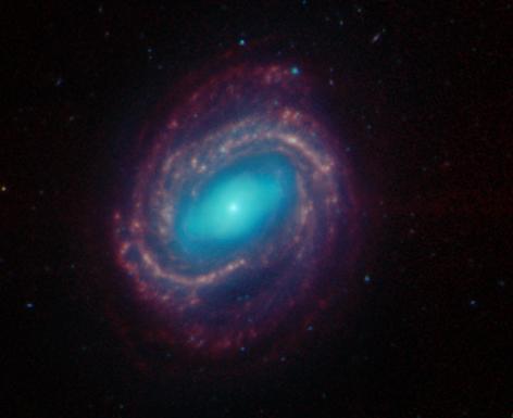 Зодиакальное созвездие Дева