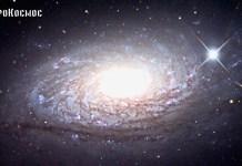 Галактика Подсолнух