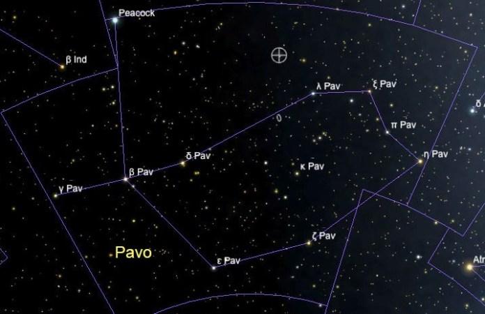 Павлин - созвездие южного полушария