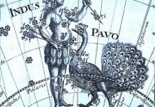 Созвездие Павлин
