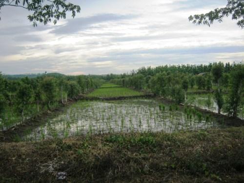 Jalur Cikamurang, Aman & Nyaman Buat Group Riding