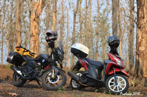 Sempat berpose di hutan Jati di daerah Balapulang - Tegal