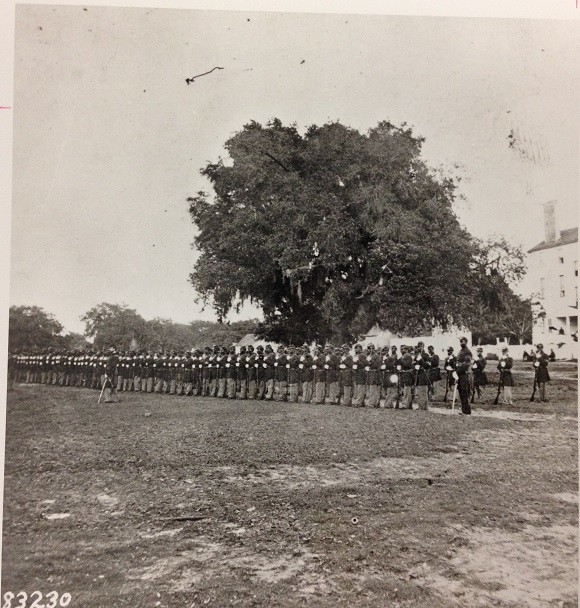 The Twenty-ninth Regiment Connecticut Volunteer Infantry, shown here, were stationed in Beaufort, South Carolina. The Military Savings Bank at Beaufort, opened in 1864 by Gen. Rufus Sexton, eventually became one of the Freedman's Savings Bank's branches. (National Archives, 111-BA-1324)