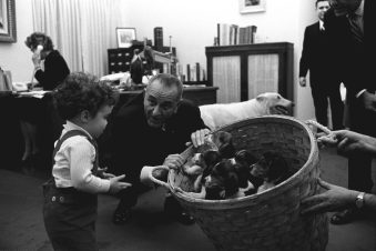 President Lyndon B. Johnson and His Puppies, 1/5/1966. (National Archives Identifier 6335322)