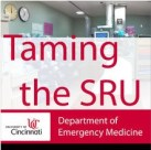 Taming the SRU