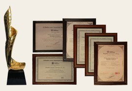 Various awards and just property rights