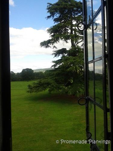 devon window view