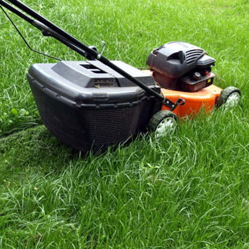 basics of lawn mowing