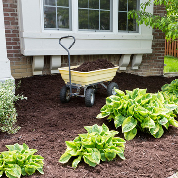 mulch this spring