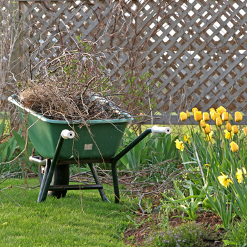spring lawn checklist