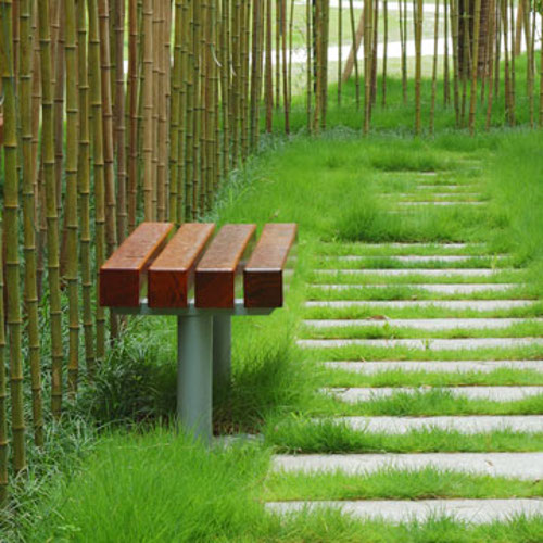 containing bamboo