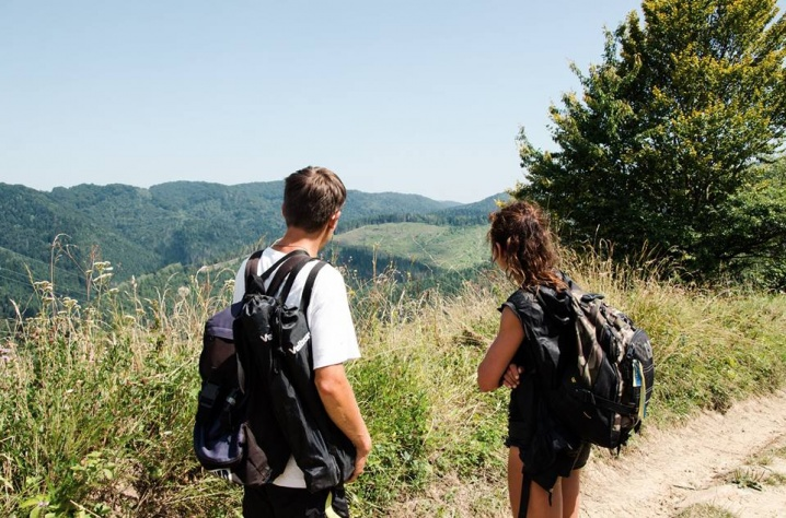 «Косять дерева, як траву», - Руслана вражена обсягами вирубки лісів на Буковині