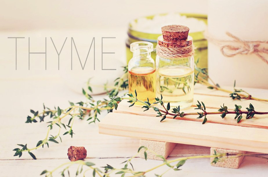 thyme graphic