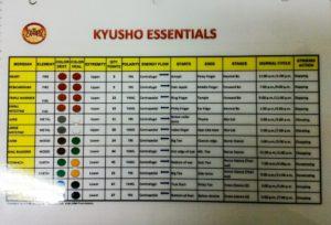 Kyusho Essentials Chart