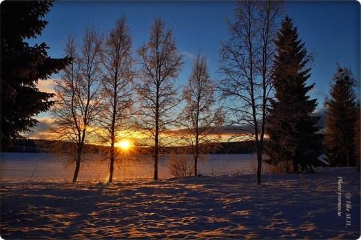 Sonne im Schnee