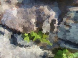 dscn9790_painting6ra