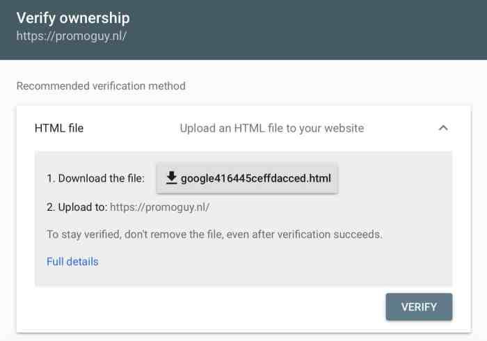 Google paieškos konsolės failai