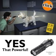tactical quality mini flashlight for your logo