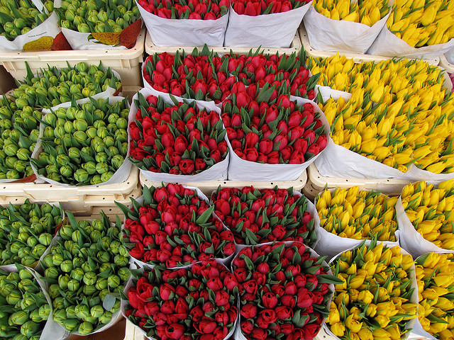 https://i1.wp.com/promptguides.com/amsterdam/_photos/bloemenmarkt/bloemenmarkt_002.jpg