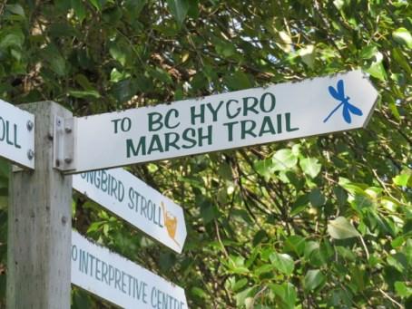 Trail marker at Creston Valley Wildlife Management (Photo © 2016 by V. Nesdoly)