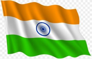 Indian govt relaxes visa, travel restrictions amid COVID-19