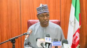 Between Gov Zulum, Security Agencies, the Terrorists and the mystery Attacks