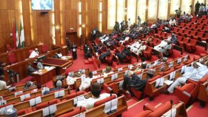 Power: Senate probes N1.8trn intervention fund