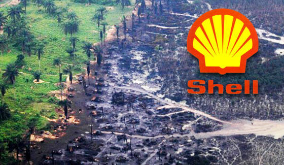 Shell confirms oil spill in Bayelsa community - Prompt News
