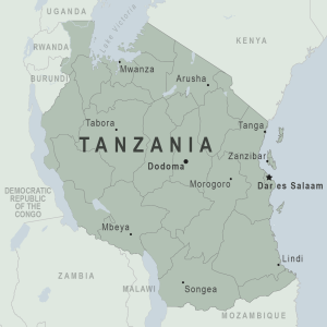 Tanzania to introduce electronic budgeting system to reduce revenue loss
