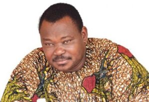 Human Security and Osinbajo State Police Thesis By Jimoh Ibrahim