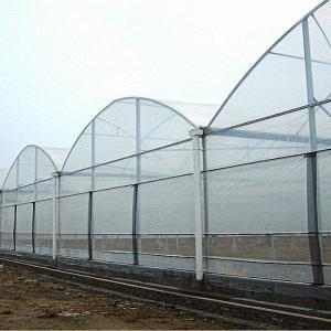Многорядные теплицы высота 4,7 м. - промышленные и фермерские теплицы