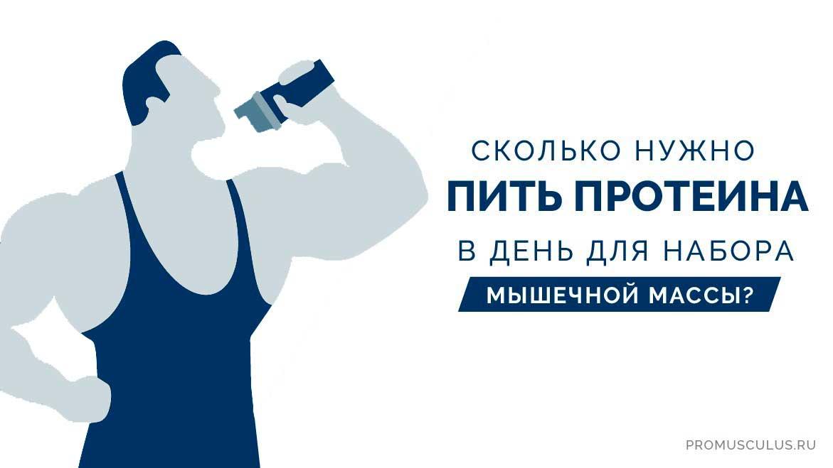 Сколько нужно протеина в день — SportWiki энциклопедия