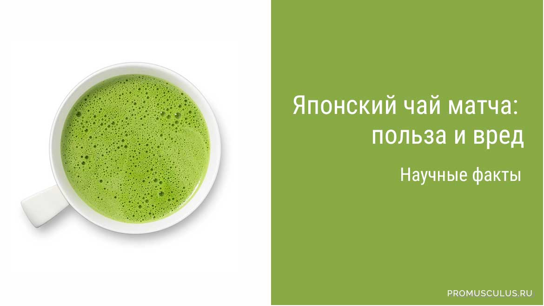 зеленый чай отзывы худеющих при