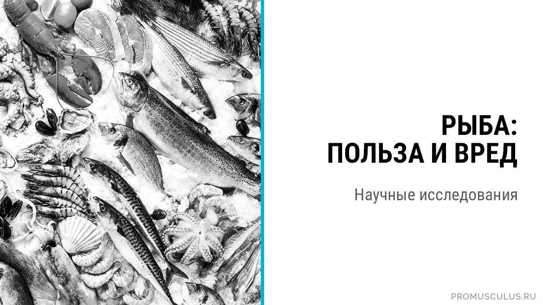 Рыба: польза и вред для здоровья человека. Научные исследования