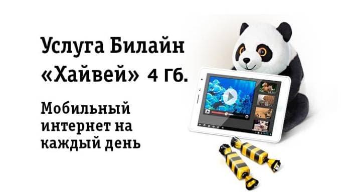 Lebuhraya Beeline 4 GB: Penerangan terperinci