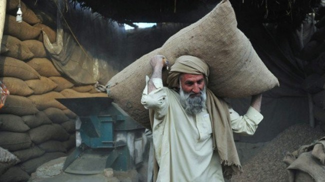 Image result for laborer in pakistan