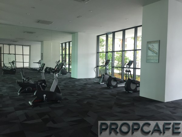 Tropicana_avenue_gym3