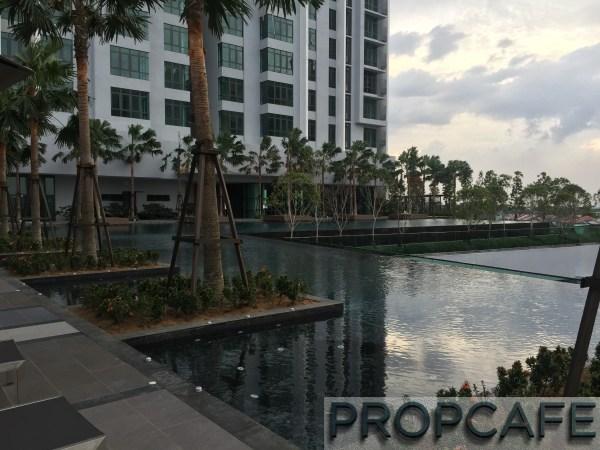 Tropicana_avenue_pool3