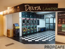 4. Delta Laundry and Dry Cleaning